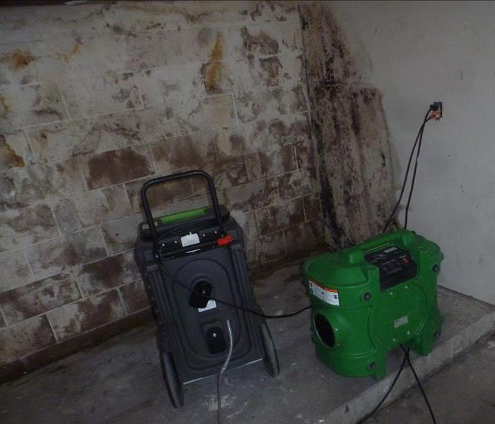 Mold Remediation Mold Prevention & Mitigation: For your health