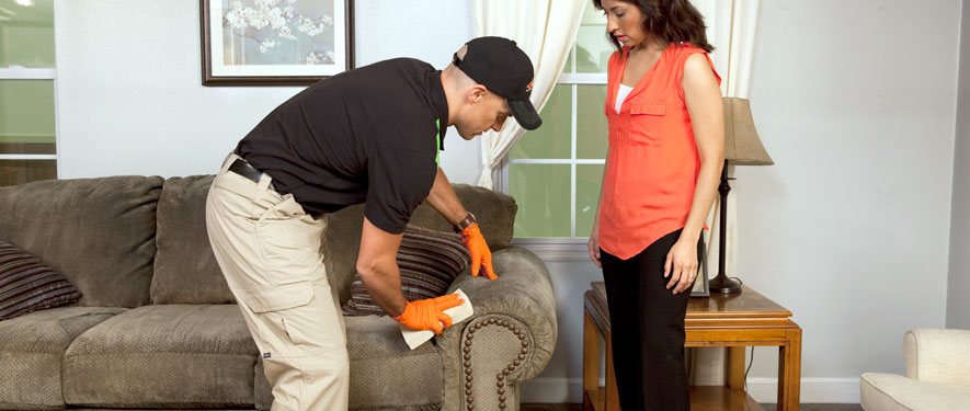 Upland, CA carpet upholstery cleaning
